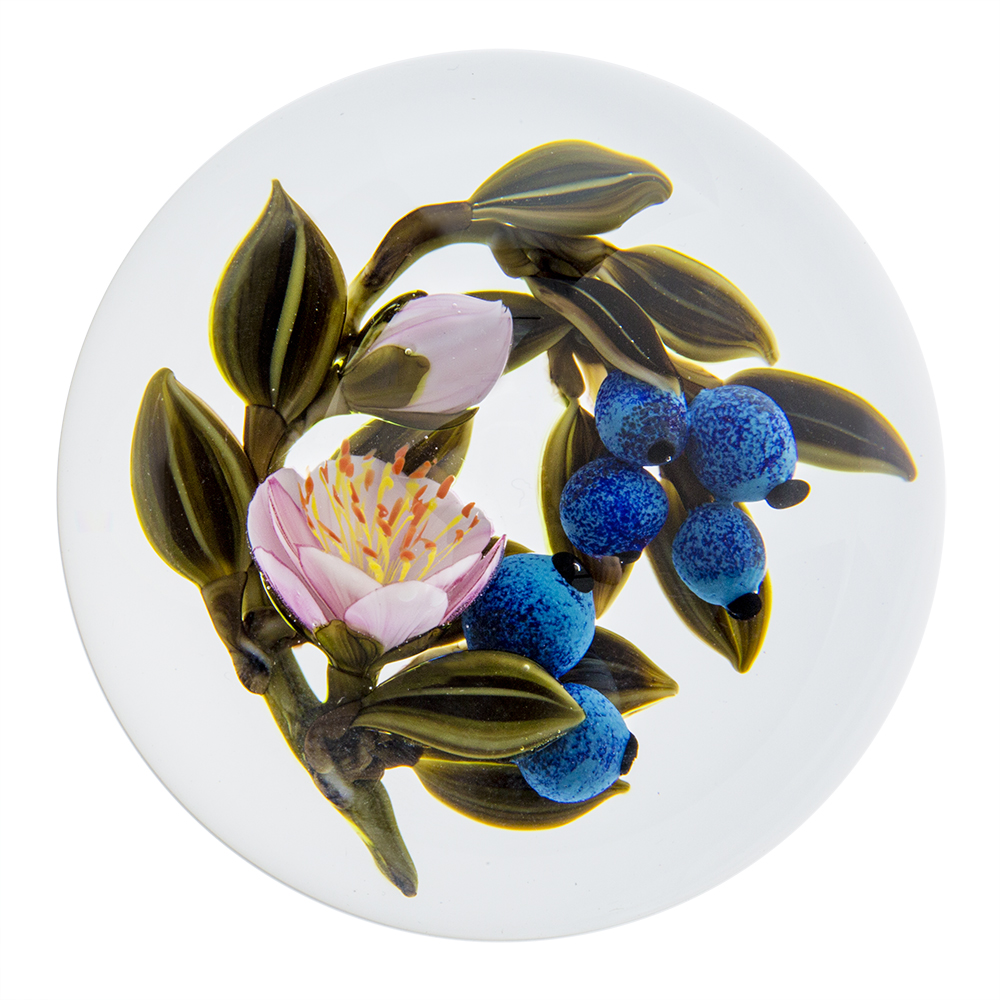 Trabucco Studios Blueberry With Flowers Paperweight Corning