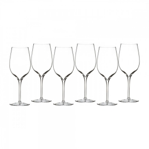 Waterford: Elegance Wine Tasting Glass, Set of 6