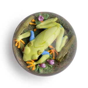 Clinton Smith: Red Eye Tree Frog Paperweight