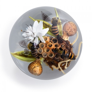 Paul J. Stankard: Pollination Series, Bees with Honeycomb