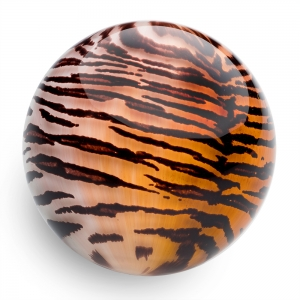 Mark Matthews: Animal Sphere, Siberian Tiger