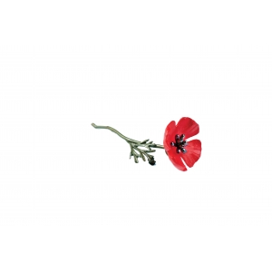 Michael Michaud: Red Poppy Brooch