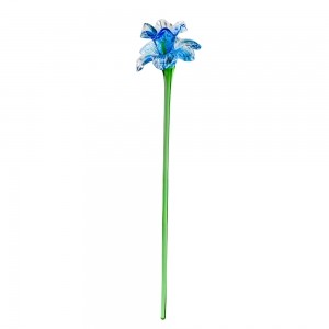 Long Stem Glass Narcissus