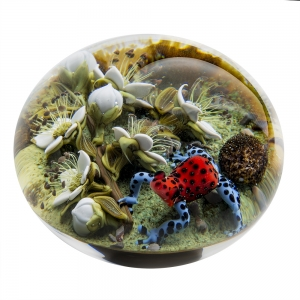 Clinton Smith: Strawberry Poison Dart Frog Paperweight