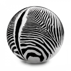 Mark Matthews: Animal Sphere, Grevy's Zebra