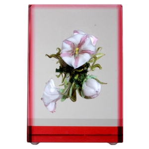 Paul J. Stankard: Framed Morning Glory Paperweight