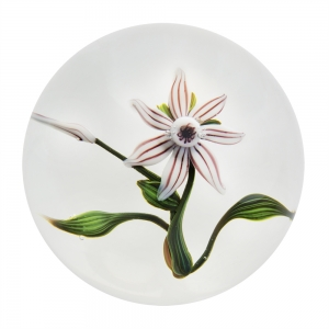 Paul J. Stankard: Stylized Clematis Paperweight