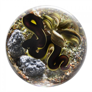 Trabucco Studios: Snake Paperweight