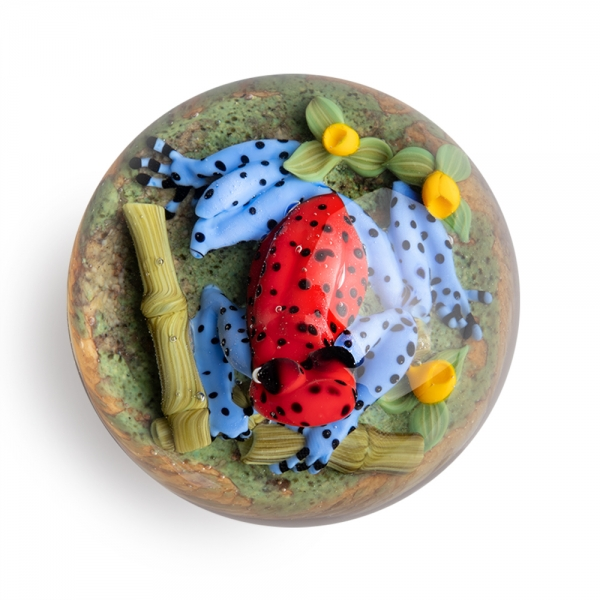 Clinton Smith: Poison Dart Frog Paperweight