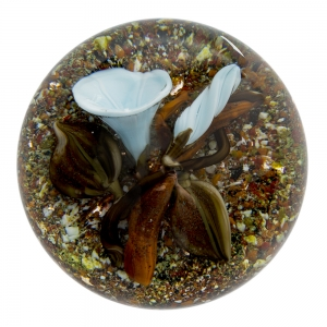 Trabucco Studios: Morning Glory Paperweight